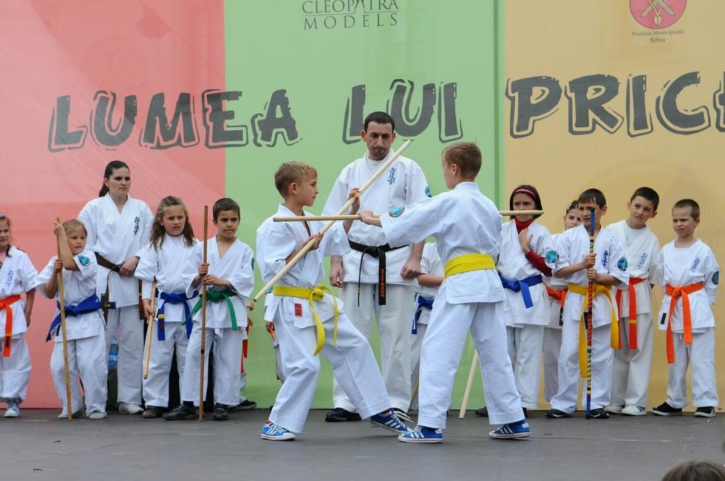 karate-502384_1280